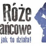 Nowa Róża Różańcowa